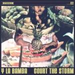 Court The Storm-529x529